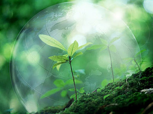 """Гурток """"Захист рослин"""""""